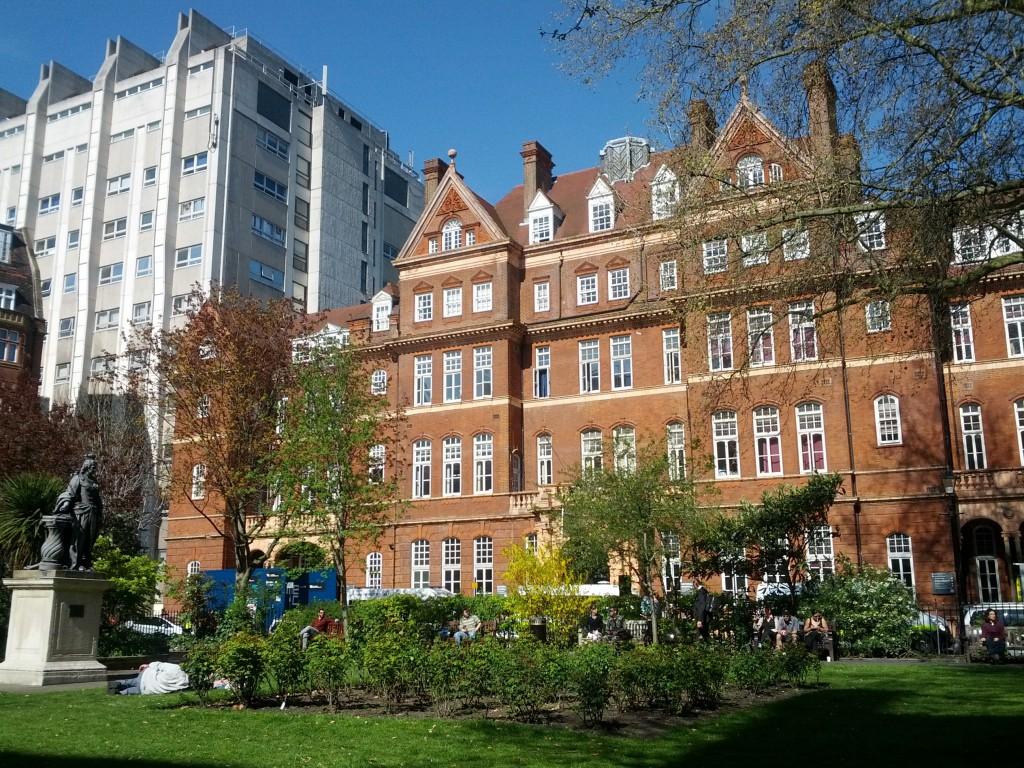 Institute of Neurology